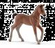 Schleich Horse Club Paard Hannoveraner Veulen 13818