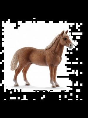 Schleich 13869 Paard Morgan, Hengst