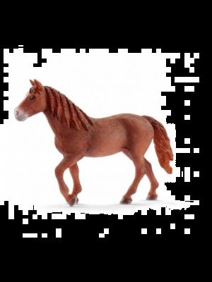 Schleich 13870 Paard Morgan, Merrie