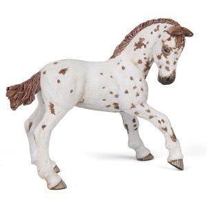 Paard Bruine Appeloosa Veulen 51510