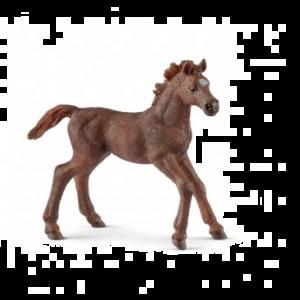 Schleich 13857 Engelse Volbloed, Paard Veulen