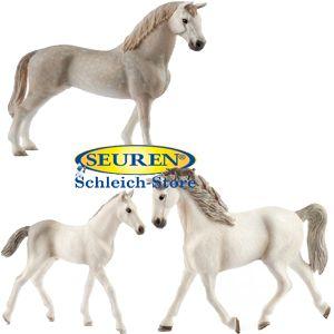 Schleich Horse Club Holsteiner Set 2018