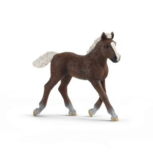 Schleich Farm World Paard Zwarte Woud Veulen 13899