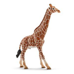Schleich Wild Life Giraf mannelijk 14749